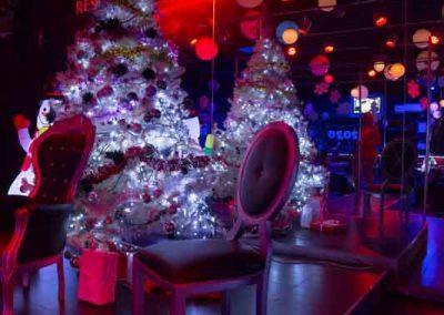 sexy-disco-penelope-lap-dance-natale-ristorante-erotico-pontedera-pisa-toscana-16